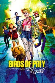 Birds of Prey et la fantabuleuse histoire de Harley Quinn 2020