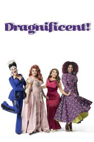 Dragnificent! 2020 en Streaming HD Gratuit !