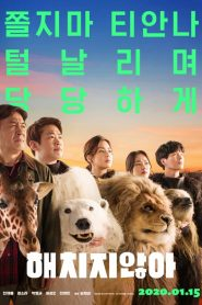 해치지않아 2020 en Streaming HD Gratuit !