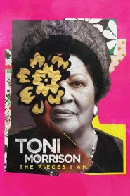 Toni Morrison : The Pieces I Am 2019 en Streaming HD Gratuit !
