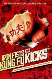 Iron Fists and Kung Fu Kicks 2019 en Streaming HD Gratuit !