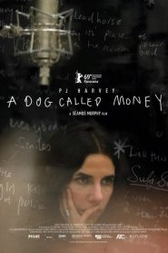 A Dog Called Money 2019 en Streaming HD Gratuit !