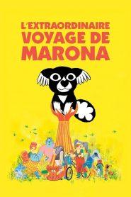 L'Extraordinaire Voyage de Marona 2020 en Streaming HD Gratuit !