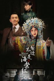 鬓边不是海棠红 2020 en Streaming HD Gratuit !