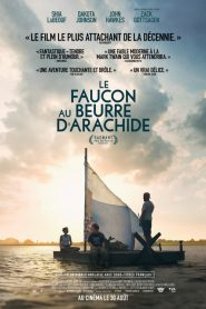 The Peanut Butter Falcon 2019 en Streaming HD Gratuit !