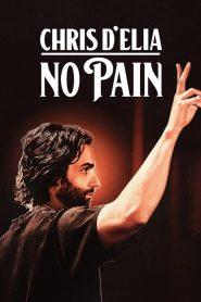 Chris D'Elia: No Pain 2020 en Streaming HD Gratuit !