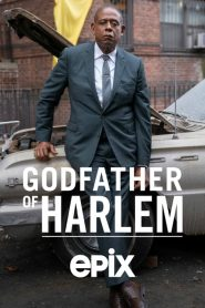 Godfather of Harlem 2019 en Streaming HD Gratuit !