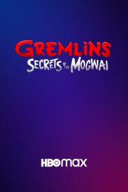 Gremlins : Secrets of the Mogwai 2020 en Streaming HD Gratuit !