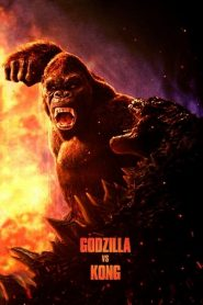 Godzilla vs. Kong 2020 en Streaming HD Gratuit !