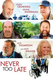 Never Too Late 2020 en Streaming HD Gratuit !