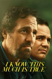 I Know This Much Is True 2020 en Streaming HD Gratuit !