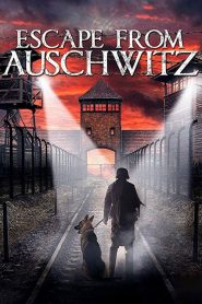The Escape from Auschwitz 2020 en Streaming HD Gratuit !