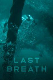 Le Survivant des abysses 2019 en Streaming HD Gratuit !
