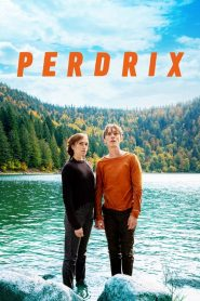 Perdrix 2019 en Streaming HD Gratuit !