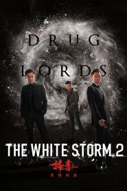 The White Storm 2 : Drug Lords 2019 en Streaming HD Gratuit !