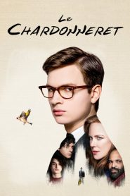 Le Chardonneret 2019 en Streaming HD Gratuit !