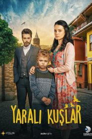 Yaralı Kuşlar 2020 en Streaming HD Gratuit !