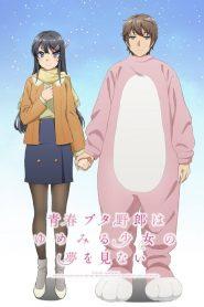 Seishun Buta Yarou wa Yumemiru Shoujo no Yume wo Minai 2019 en Streaming HD Gratuit !