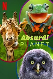 Absurd Planet 2020 en Streaming HD Gratuit !