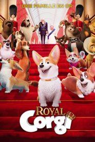 Royal Corgi 2019 en Streaming HD Gratuit !