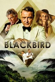 Blackbird 2020 en Streaming HD Gratuit !