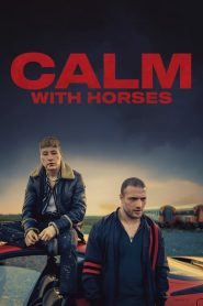 Calm with Horses 2020 en Streaming HD Gratuit !