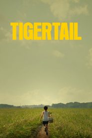 Tigertail 2020 en Streaming HD Gratuit !