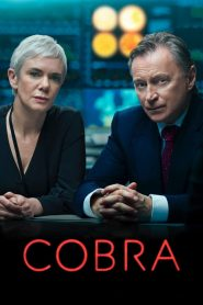 COBRA 2020 en Streaming HD Gratuit !