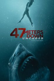 47 Meters Down: Uncaged 2019 en Streaming HD Gratuit !