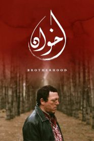 Brotherhood 2020 en Streaming HD Gratuit !