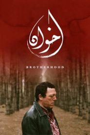 Brotherhood 2020 en Streaming HD Gratuit !