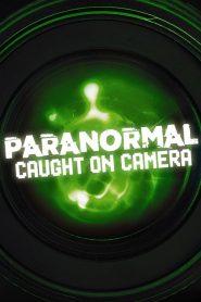 Paranormal Caught on Camera 2019 en Streaming HD Gratuit !