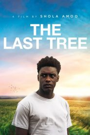 The Last Tree 2019 en Streaming HD Gratuit !