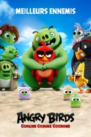 Angry Birds, Copains comme cochons 2019 en Streaming HD Gratuit !