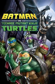 Batman et les Tortues Ninja 2019 en Streaming HD Gratuit !