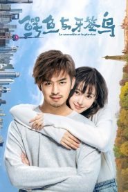 鳄鱼与牙签鸟 2019 en Streaming HD Gratuit !