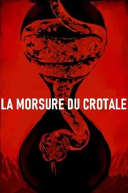 La Morsure du crotale 2019 en Streaming HD Gratuit !