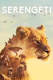 Serengeti 2019 en Streaming HD Gratuit !