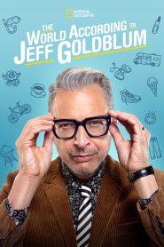 Le Monde selon Jeff 2019 en Streaming HD Gratuit !
