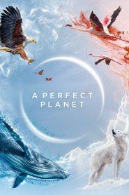Un planète Parfaite 2021 en Streaming HD Gratuit !