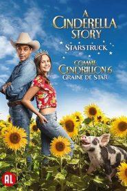 Comme Cendrillon 6 : Graine De Star 2021 en Streaming HD Gratuit !
