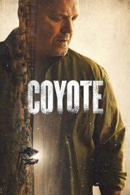 Coyote 2021 en Streaming HD Gratuit !