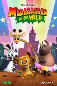 Madagascar: A Little Wild 2020 en Streaming HD Gratuit !
