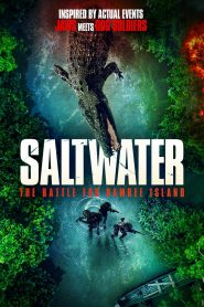 Saltwater: The Battle for Ramree Island 2021 en Streaming HD Gratuit !