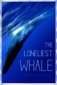 The Loneliest Whale: The Search for 52 2021 en Streaming HD Gratuit !
