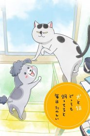 With a Dog AND a Cat, Every Day is Fun 2020 en Streaming HD Gratuit !